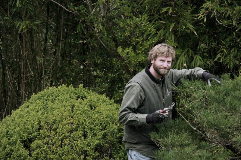 Tarif d 39 un jardinier professionnel for Recherche jardinier pour entretien jardin