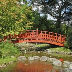 Prix d'un jardin Japonais