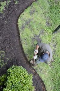 amenagement jardin par paysagiste jardinier