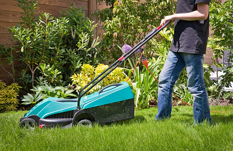 Semer du gazon for Devis gazon jardin