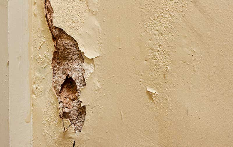 Comment isoler un mur humide for Humidite sur mur interieur