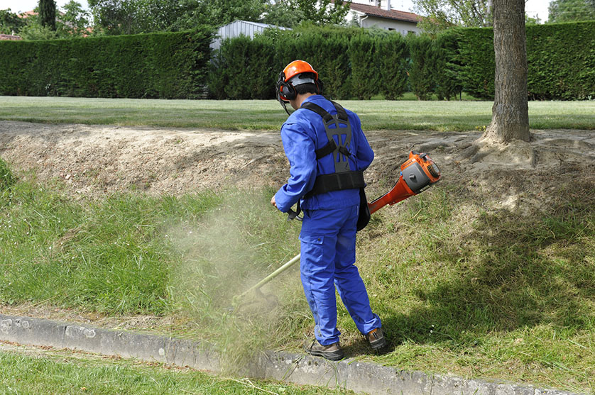 Cr dit d 39 imp t pour l 39 entretien d 39 espace vert for Entretien jardin locataire