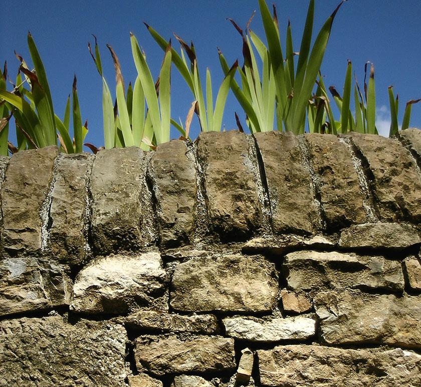 construire un muret en pierre