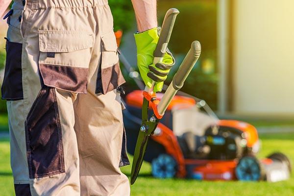 Faire un contrat d 39 entretien de jardin for Contrat type entretien espaces verts