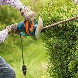 Faire un contrat d'entretien de jardin