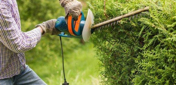 Travaux ext rieurs travaux bricolage for Contrat entretien jardin