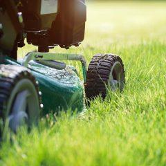 Prix de tonte d'une pelouse au m2