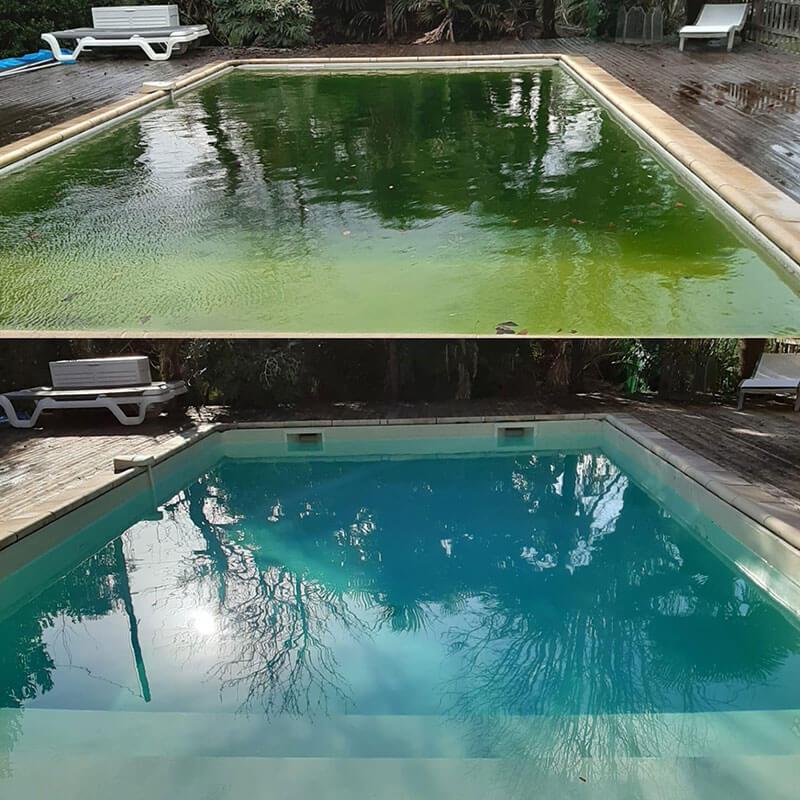 que faire eau piscine verte