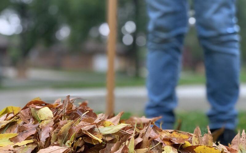 outils pour ramasser les feuilles mortes