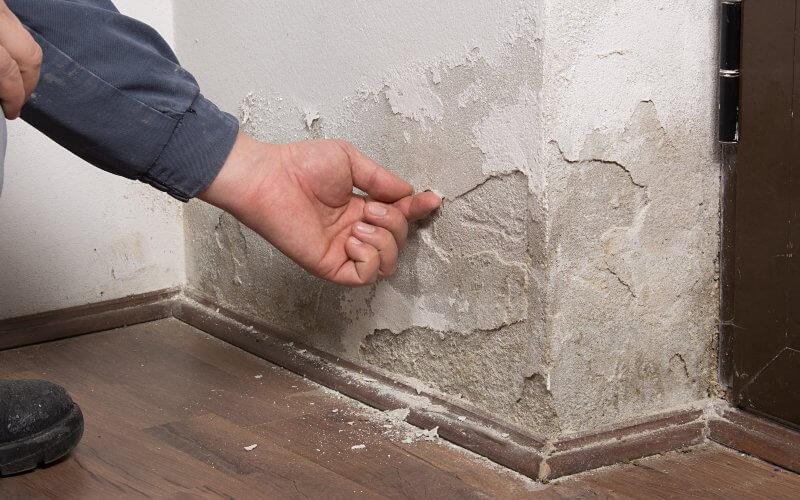 identifier du salpêtre sur les murs
